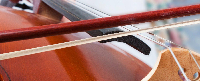Cello at Peninsula Music Festival