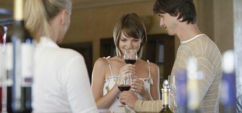 Door County Wineries