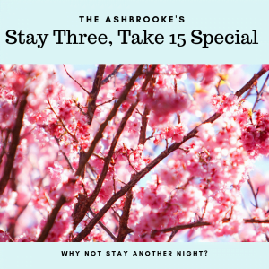 The Ashbrooke Spring Special